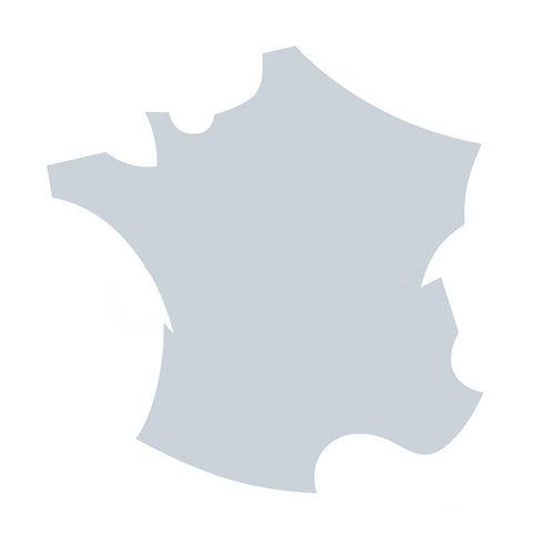 France-A2-1.jpg