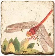 Single Marble Coaster- Red Dragonfly