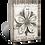 Thumbnail: Cosmopolitan Flower- T449