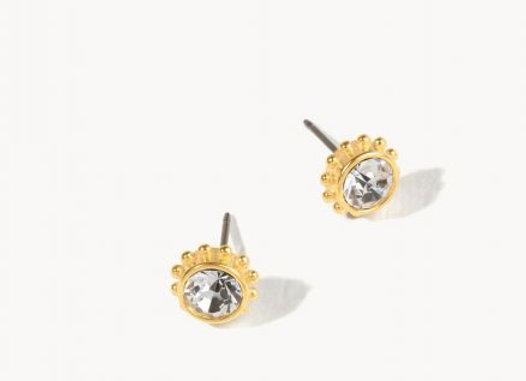 Delicate Adorned Stud Earrings