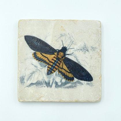 Single Marble Coaster- Navy & Yellow Moth