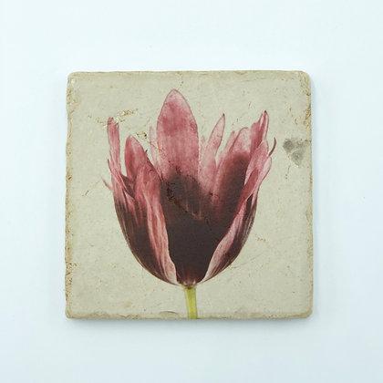 Single Marble Coaster-Negative Tulip