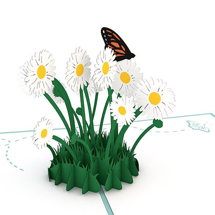 Classic Daisy Patch Pop Up Card