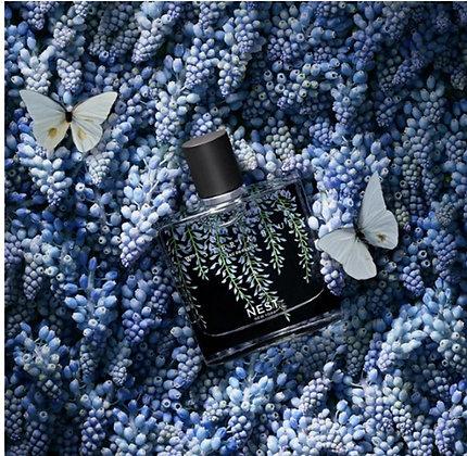 Wisteria Blue Eau de Parfum (50mL)