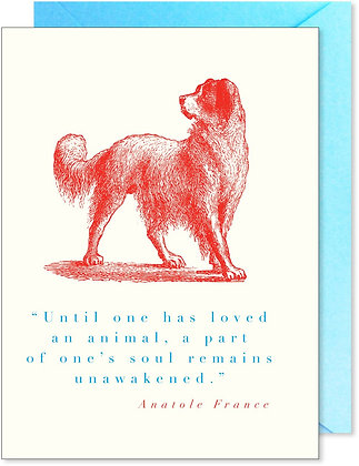 Animal Quote Red Dog Card