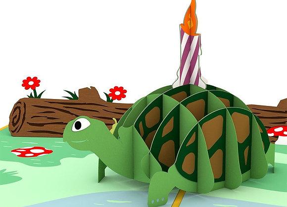 Celebration Turtle 3D Card