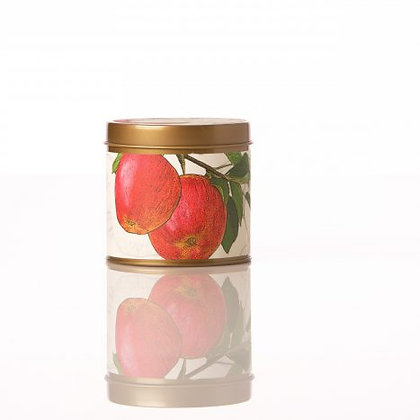 Spicy Apple Botanical Tin Candle
