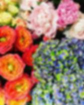 summer color flowers .JPG