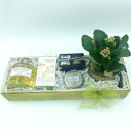 Willow & Water Blossom Box