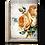 Thumbnail: Sunset Rose T521
