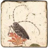 Single Marble Coaster- Beetle
