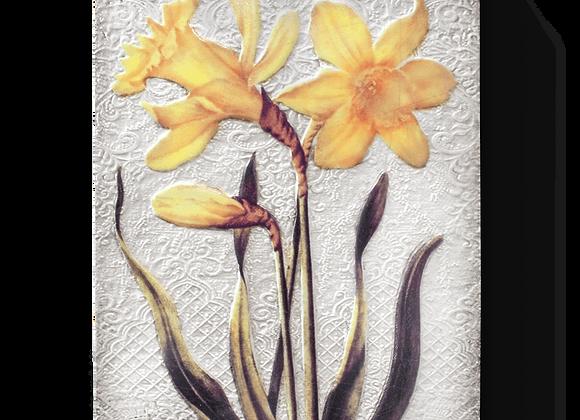 Daffodils T510