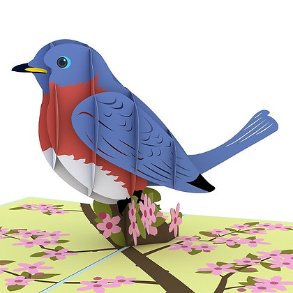Bluebird Pop Up Card