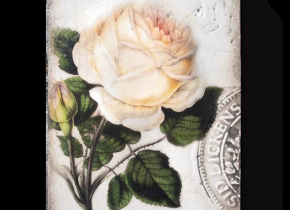 Sweet Rose- T374