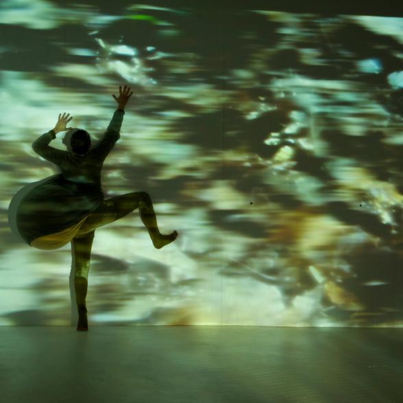 Cirque multimedia - MAAC - Bxl 2013