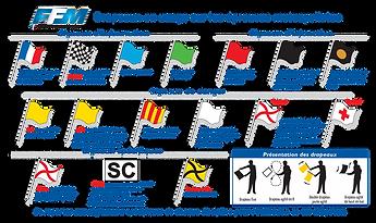Les drapeaux-0.png