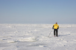 E8 The frozen Baltic