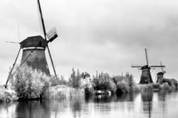 NE20 Kinderdijk