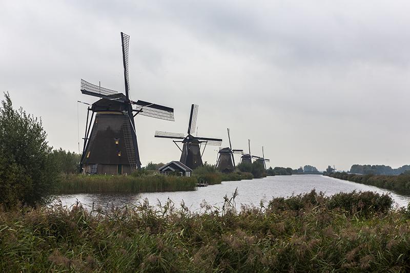 NE15 Kinderdijk