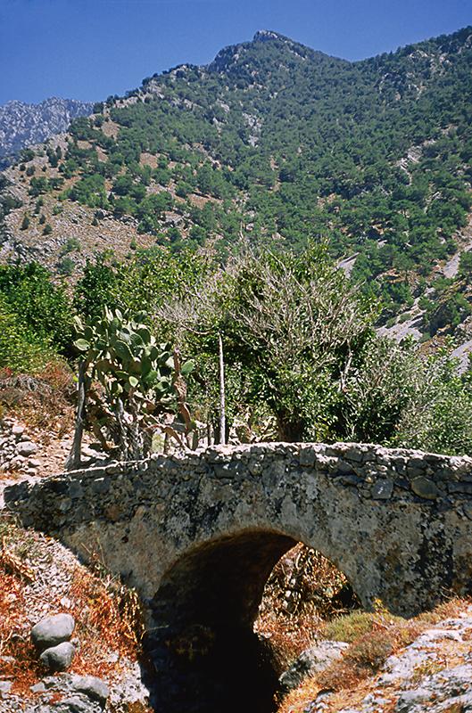 G13 Agia Roumeli, Crete