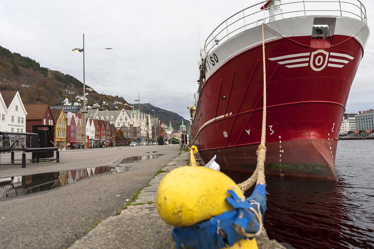 N13 Vågen harbour, Bryggen district, Bergen, Hordaland, Norway