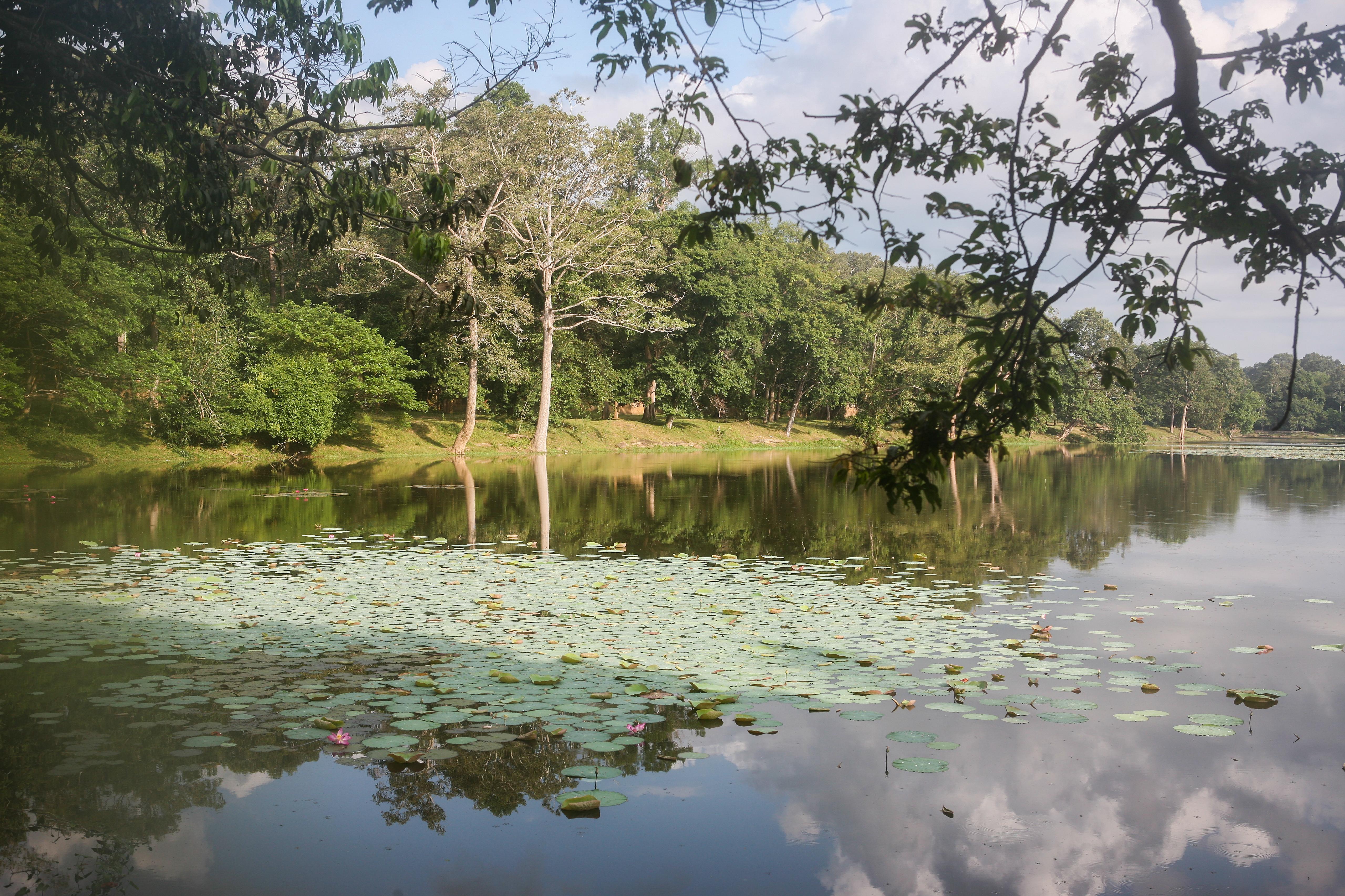 SE11 Angkor Wat