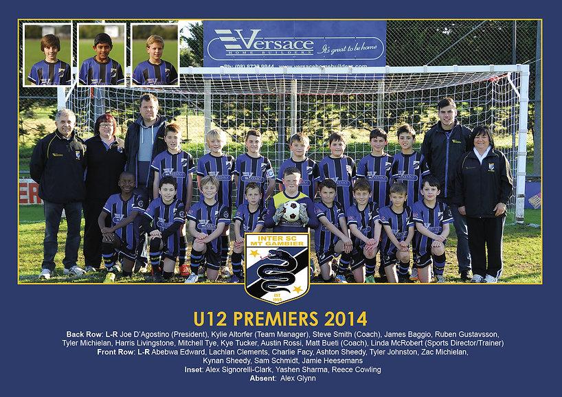 2014 - Under 12 Premiers.jpg