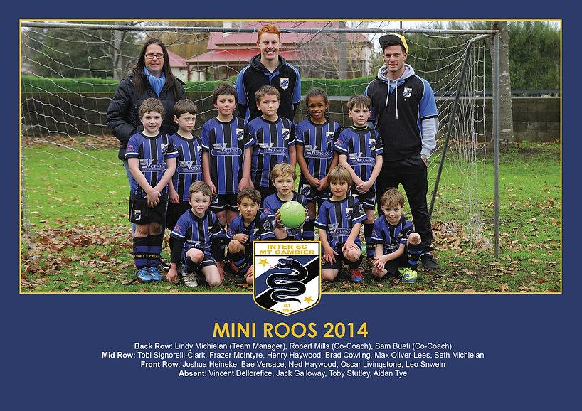 2014 - Mini Roos.jpg