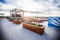 WAL - Rooftop Community Garden