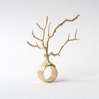 Joshua Tree Ring
