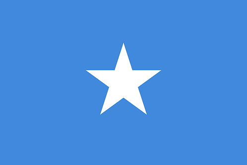 Somali Visa - Single Entry