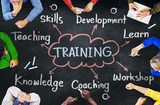 Customised Due Diligence Advice & Training