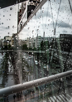 Left Bank Rain