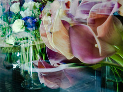 Venice Flower Shop Reflection