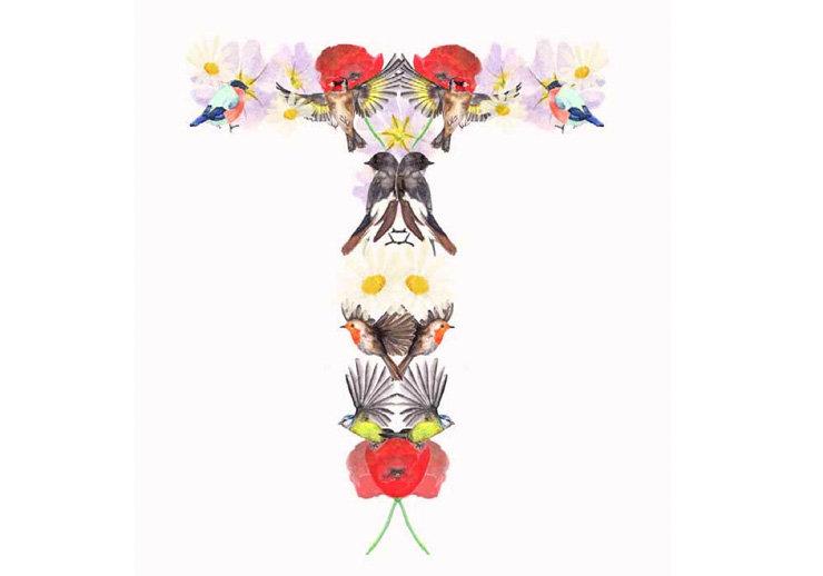 Samsung bird and flower illustration.