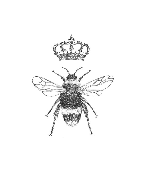 Bumblebee illustration design for Lady Bee's High Tea