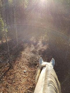 Finn trail ride.jpg
