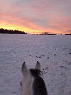 Mindy sunset.jpg