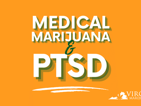Medical Marijuana for PTSD and Chronic Pain: Addressing Veterans' Concerns
