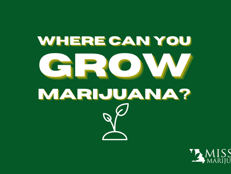 Where Can You Grow Marijuana Plants if You Have a Missouri Marijuana Card?