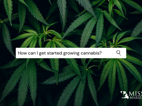 How Can I Get Started Growing Medical Marijuana in Missouri?