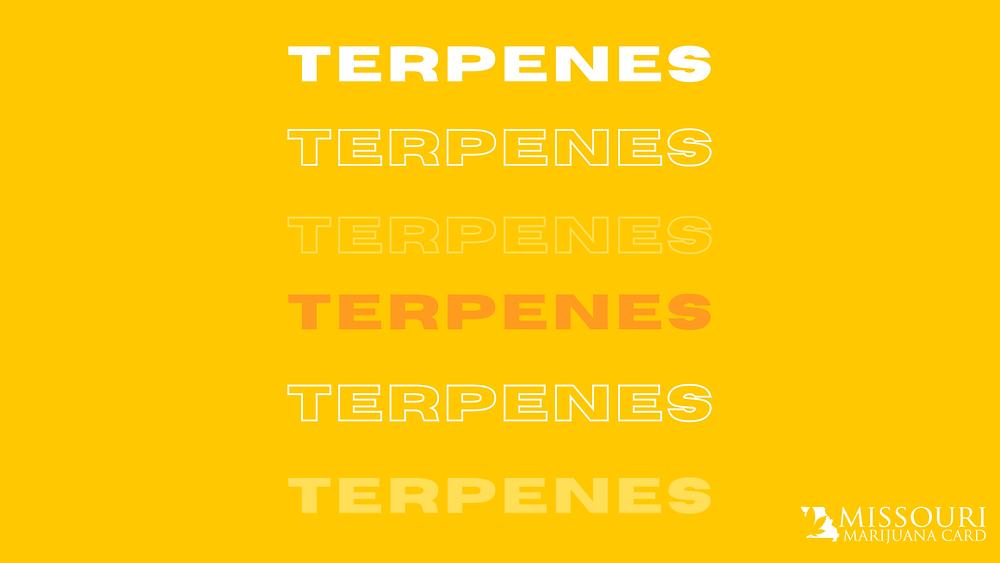 Terpenes in Missouri
