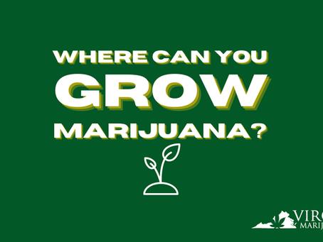 Adult-Use Cannabis in VA: Where Can You Grow Marijuana Plants?