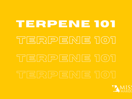 Terpenes: What are They, and Which Ones Should You Look For at Missouri Dispensaries?