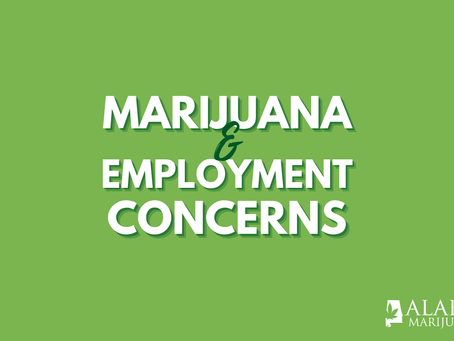 An Alabama Marijuana Card Will Let You Legally Buy and Use Cannabis. But is Your Job Safe?