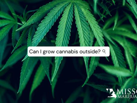 Getting Started Growing Marijuana Outside in Missouri