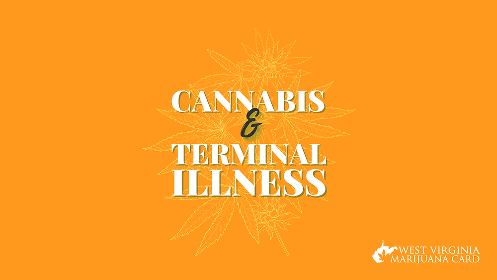 Cannabis and terminal illness