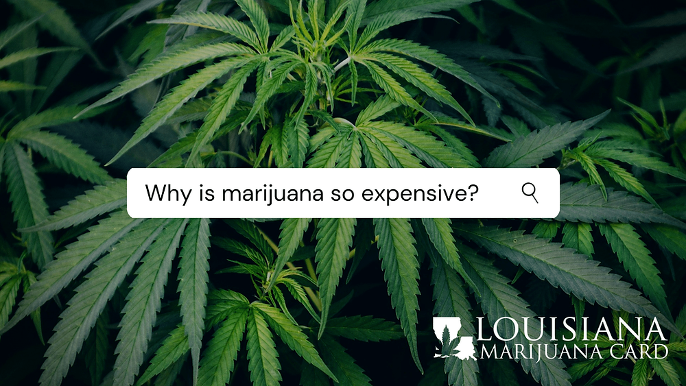 Medical marijuana in Louisiana - why is it so expensive?