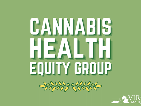 Health Equity and Cannabis Law Enforcement