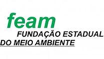 FEAM.jfif